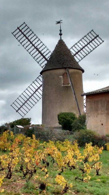 Le Moulin à Vent à Romanèche Thorins